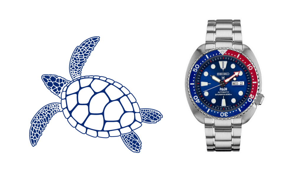 Photo of a turtle drawing and a photo of a Seiko Turtle SRPA21 PADI