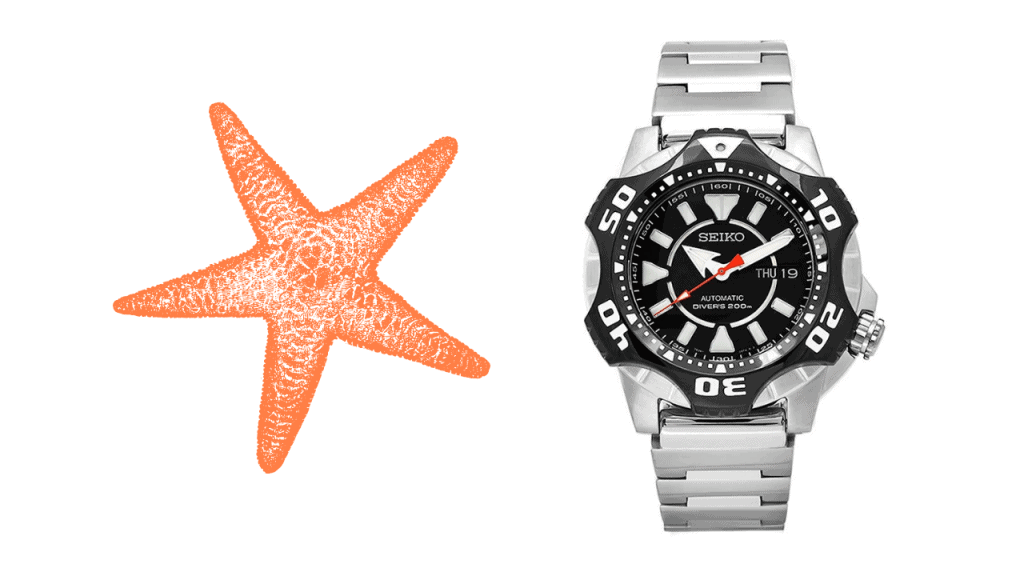 A picture of a starfish and a photo of Seiko Starfish SKZ283